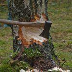 charte-forestiere-exploitant