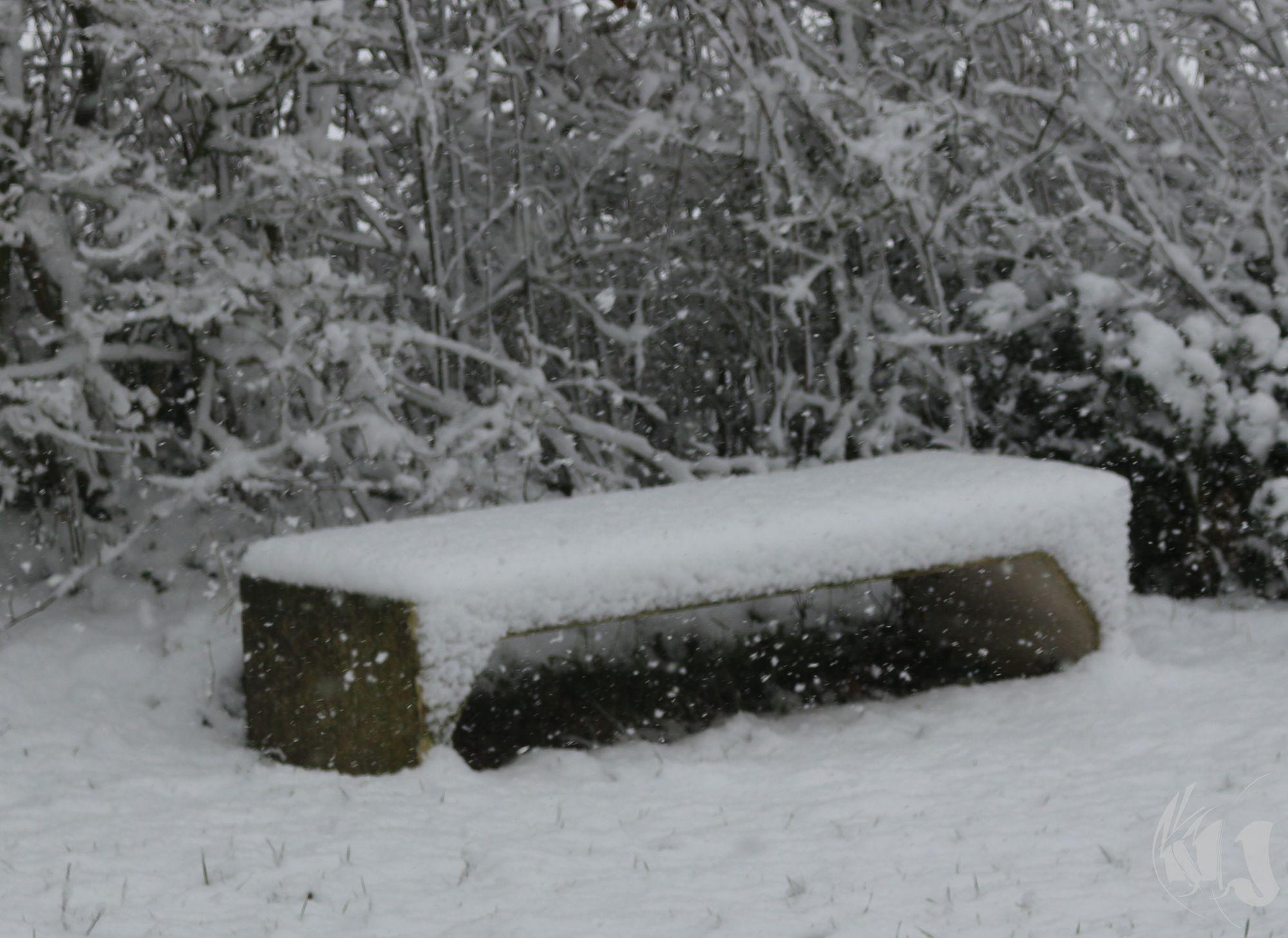 neige Fevrier 2018 (11)
