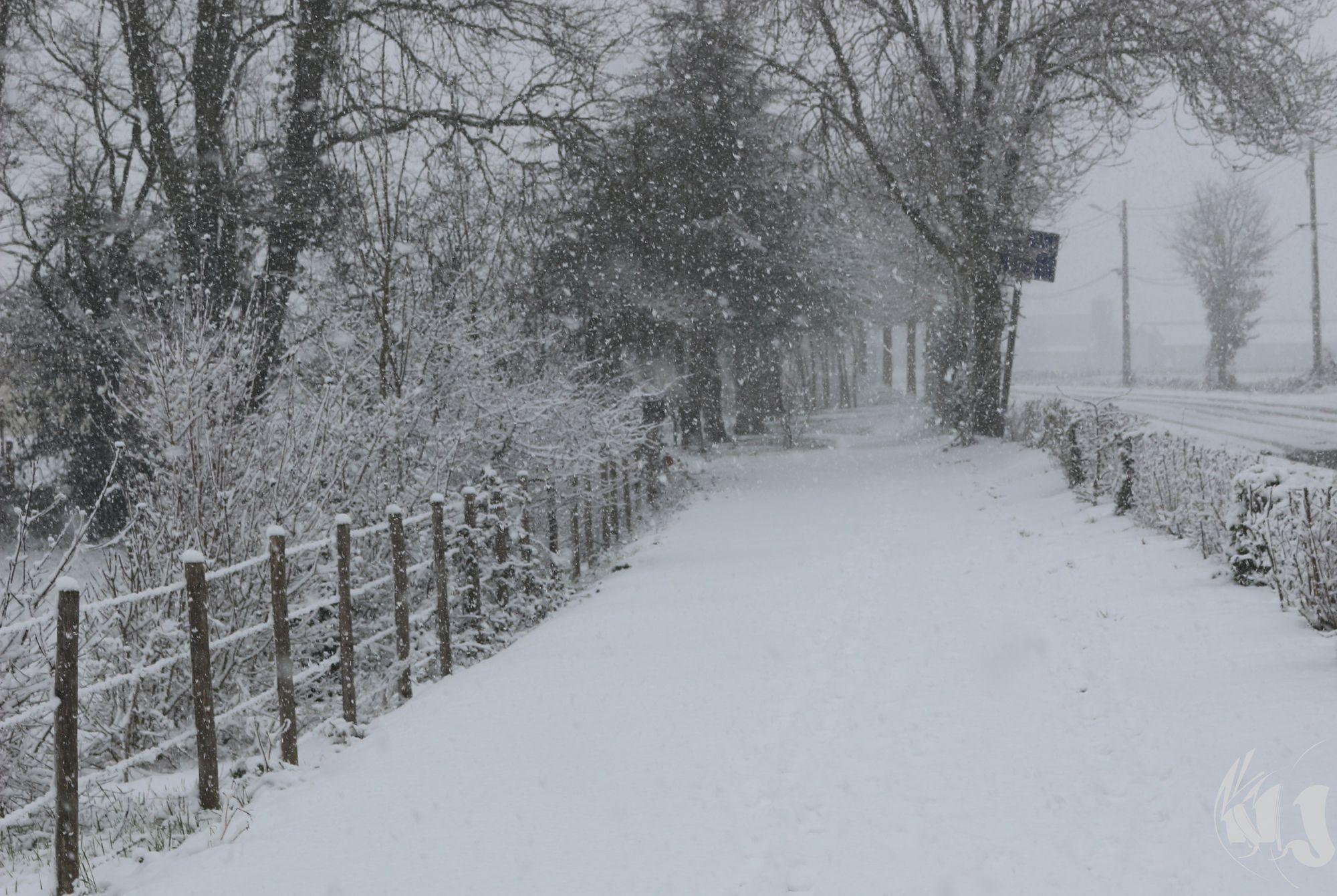 neige Fevrier 2018 (3)